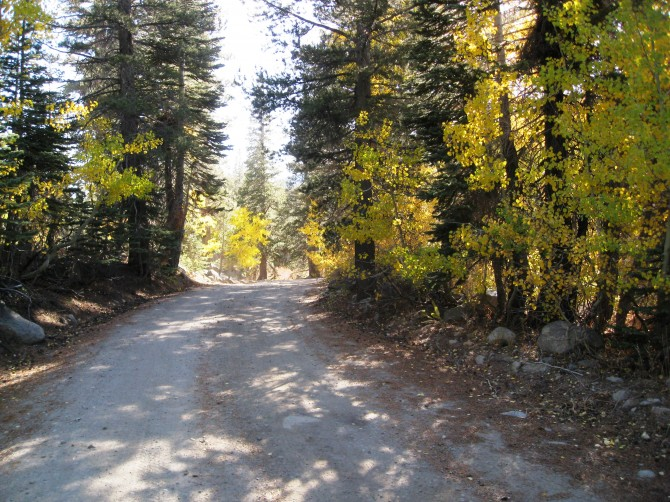 Forestdale Divide Road, a great adventure motorcycle road near Carson Pass