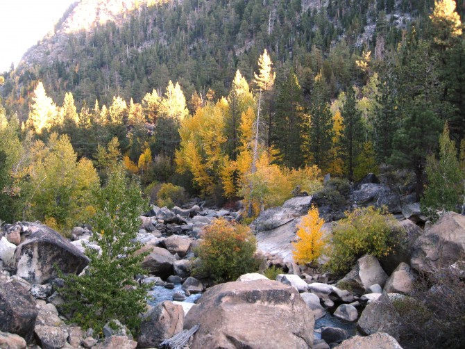 Fall color in Hope Valley